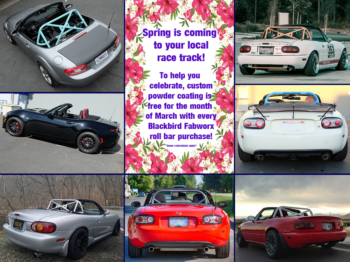 Free Custom Powder Coat on all Roll Bar Purchases in March